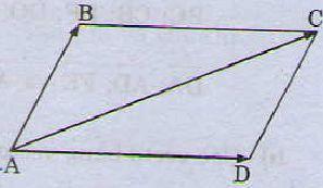 Tổng và hiệu của hai vectơ