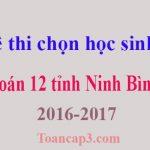 Đề thi chọn học sinh giỏi Toán 12 tỉnh Ninh Bình 2016-2017